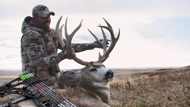 Long Shot Mule Deer
